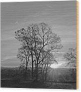 A. M. Wood Print
