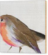 A Magical Little Robin Called Wisp Wood Print