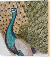 A Male Peacock In Full Display, 1763 Wood Print