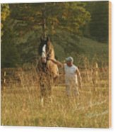 A Man And His Horse Wood Print by Terry Kirkland Cook