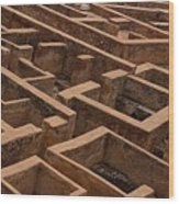 A Maze Life Is A Maze Wood Print