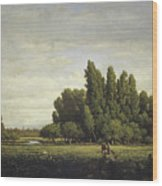 A Meadow Bordered By Trees Wood Print
