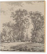 A Meadow With Cattle At The Edge Of A Wood Wood Print