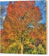 A Michigan Fall-2 Wood Print