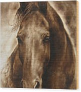 A Misty Touch Of A Horse So Gentle Wood Print