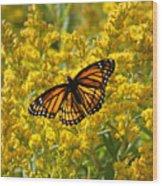 A Monarch World Wood Print