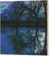 A Monet Kinda Day Wood Print