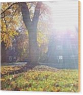 A Morning In Fall Wood Print
