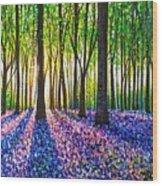 A Morning Walk Through Bluebells Wood Print