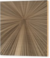 A Mosquito Net, Viewed From The Inside Wood Print