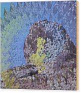 A Mossy Rock  Wood Print