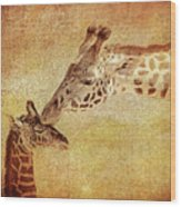 A Mother's Kiss Painted 2 Wood Print