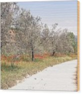 A Much Unknown Walk Wood Print