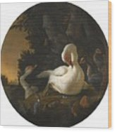 A Mute Swan A Goose And Other Fowl Wood Print