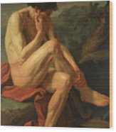 A Naked Man Sitting In A Landscape Wood Print