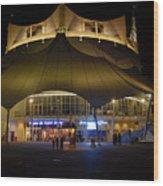 A Night At The Circus Wood Print