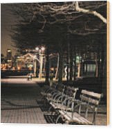 A Night In Hoboken Wood Print by JC Findley