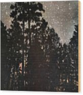 The Forest Night Wood Print