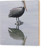 A Noble Bird Is The Pelican Wood Print