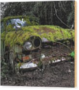 A Non Rolling Car Gathers Some Moss Wood Print