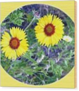 A Pair Of Wild Susans Wood Print