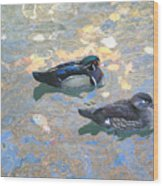 A Pair Of Wood Ducks Wood Print