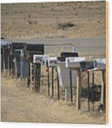 A Parade Of Mailboxes On The Outskirts Wood Print