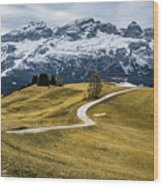 A Path In The Dolomites - Alta Badia, Italy - Landscape Photogra Wood Print