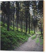 A Path Through A Dense Forest Wood Print