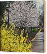 A Path Through The Garden Wood Print