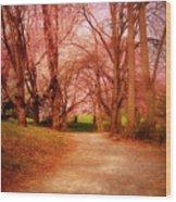 A Path To Fantasy - Holmdel Park Wood Print