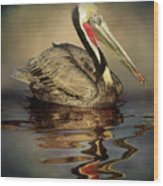A Pelican And His Reflection Wood Print