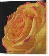 A Perfect Rose #2 Wood Print