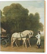 A Phaeton With A Pair Of Cream Ponies In The Charge Of A Stable-lad Wood Print