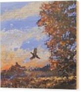 A Pheasent At Sundown Wood Print by Douglas Trowbridge