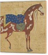A Piebald Stallion Wood Print