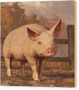 A Pig In Autumn Wood Print