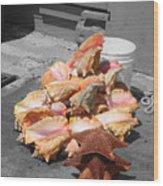 A Pile Of Seashells Wood Print