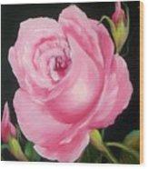 A Pink Rose Wood Print