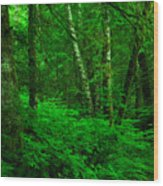 A Place In The Forest Wood Print