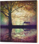 A Place To Rest In The Dark Wood Print