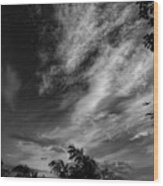 A Plane In The Clouds Wood Print