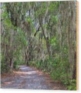 A Pleasant Stroll Wood Print