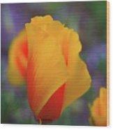 A Poppy Furled  Wood Print