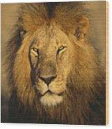 A Portrait Of A Male Wood Print