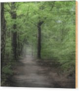A Preview Of Speulderbos Wood Print