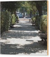 A Promenade In Rehavia Wood Print