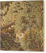A Quaint Detailing Of The Most Beautiful Tropical Country Venezuela Wood Print