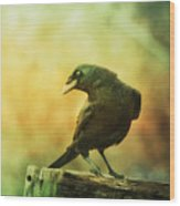 A Ravens Poise Wood Print