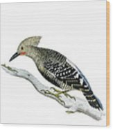 A Red Headed Woodpecker 2 Wood Print